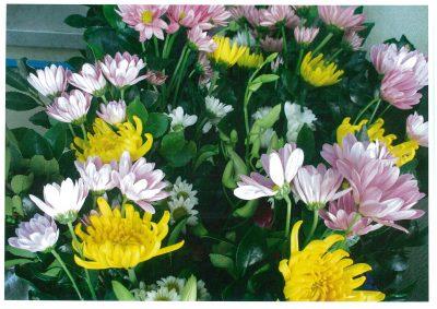 お正月用お花の販売